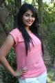 Actress Anjali at Settai Movie Press Meet Stills