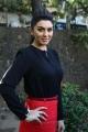 Actress Hansika Motwani at Settai Movie Press Meet Stills