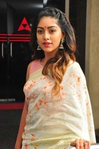 Shailaja Reddy Alludu Actress Anu Emmanuel Interview Pics