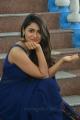 Actress Shalini Pandey Blue Saree Photos @ Jwala Movie Opening