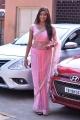 Actress Shalu Chourasiya in Pink Saree Photos