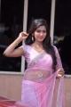 Actress Shalu Chourasiya Hot Pink Saree Photos