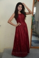 Actress Shalu Chourasiya New Pics in Red Long Gown Dress