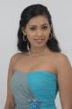 Tamil Actress Shammu Hot Photo Shoot Pictures