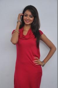 Actress Shanvi Hot Photos at Adda Movie Success Meet
