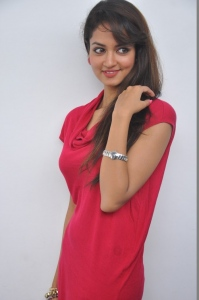 Actress Shanvi Hot Pics at Adda Movie Success Meet