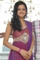 Cute Shanvi at Lovely Movie Triple Platinum Disc Function