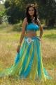 Lovely Heroine Shanvi Hot Pics