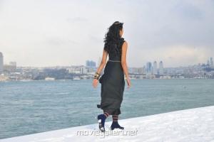 Telugu Heroine Shanvi in Black Dress Pictures