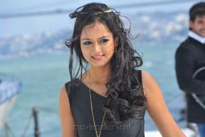 Lovely Heroine Shanvi in Black Dress Pics