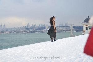 Shanvi Cute Still in Black Dress