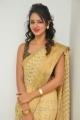 Actress Shanvi in Golden Saree Photos at her Manager Hari Wedding Reception