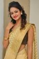 Actress Shanvi Photos in Golden Color Saree