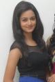 Shanvi Latest Hot Photos at at Devaraya Audio Release Function