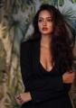 Actress Shanvi Srivastava Glam Photshoot Pics