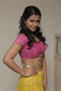 Sharmila Mandre Latest Hot Stills in Pink Top & Yellow Long Skirt