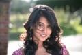 Mirattal Heroine Sharmila Mandre New Pics