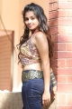 Telugu Actress Sheena Shahabadi Hot in Jeans Photos