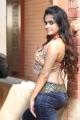 Actress Sheena Shahabadi Hot Tight Jeans Photos