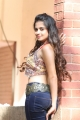 Actress Sheena Shahabadi Hot Tight Jeans Photos