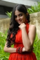 Sheena Shahabadi New Hot Photos Stills