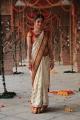 Sheena Shahabadi Beautiful Stills in Traditional Silk Saree