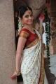 Sheena Shahabadi Stills in White Designer Traditional Bridal Silk Saree