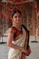 Telugu Actress Sheena Shahabadi White Bridal Saree Stills