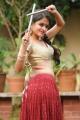 Actress Sheena Shahabadi Navratri Special Photoshoot Gallery