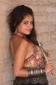 Sheena Shahabadi Special Photoshoot for Navratri Gallery