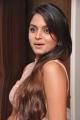 Sheena Shahabadi Hot Pictures @ Nuvve Naa Bangaram Logo Launch
