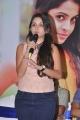 Sheena Shahabadi New Pictures @ Nuvve Naa Bangaram Logo Launch
