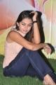 Sheena Shahabadi New Pictures @ Nuvve Naa Bangaram First Look Launch