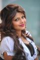 Telugu Actress Sherin Stills