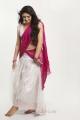 Tamil Actress Sherin in Half Saree Photoshoot Gallery