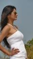 Actress Monika Singh in Shikaar Telugu Movie Gallery