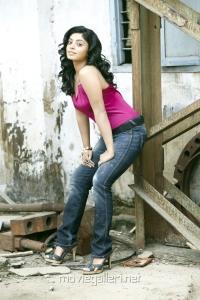 Shikha Hot Photo Shoot Stills