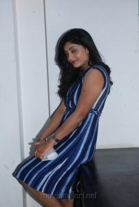 shikha_tamil_actress_hot_stills_0110
