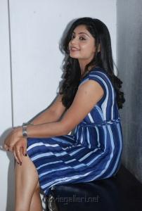 shikha_tamil_actress_hot_stills_0932