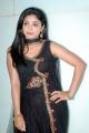 Actress Shikha Stills