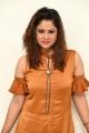 Anchor Shilpa Chakravarthy Images @ Petta Pre Release Event