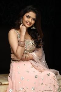 Nenjam Undu Nermai Undu Odu Raja Actress Shirin Kanchwala Photos HD