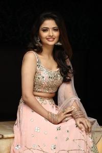 Nenjamundu Nermai Undu Odu Raja Actress Shirin Kanchwala Photos HD