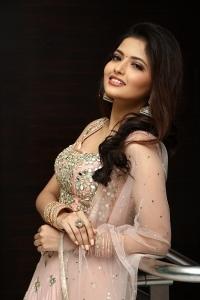 Nenjam Undu Nermai Undu Odu Raja Heroine Shirin Kanchwala Photos HD