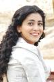 Shriya Saran Gorgeous Photos in Love 2 Love