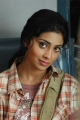 Love 2 Love Telugu Movie Actress Shirya Saran Beautiful Images