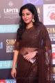 Actress Shivada Nair Saree Pics @ SIIMA Awards 2018 Red Carpet (Day 1)