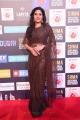 Actress Sshivada in Saree Pics @ SIIMA Awards 2018 Red Carpet (Day 1)