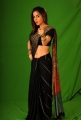 Shradha Arya in Saree Hot Photo Shoot Stills