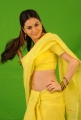 Shraddha Arya Latest Hot Photo Shoot Gallery